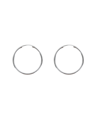 Basic Metallic Hoop Earrings