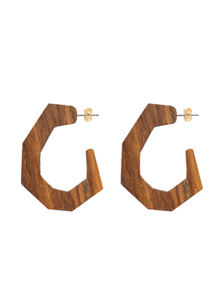 Hook-Shaped Earrings