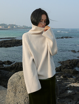 Raglan Sleeves Turtleneck Top